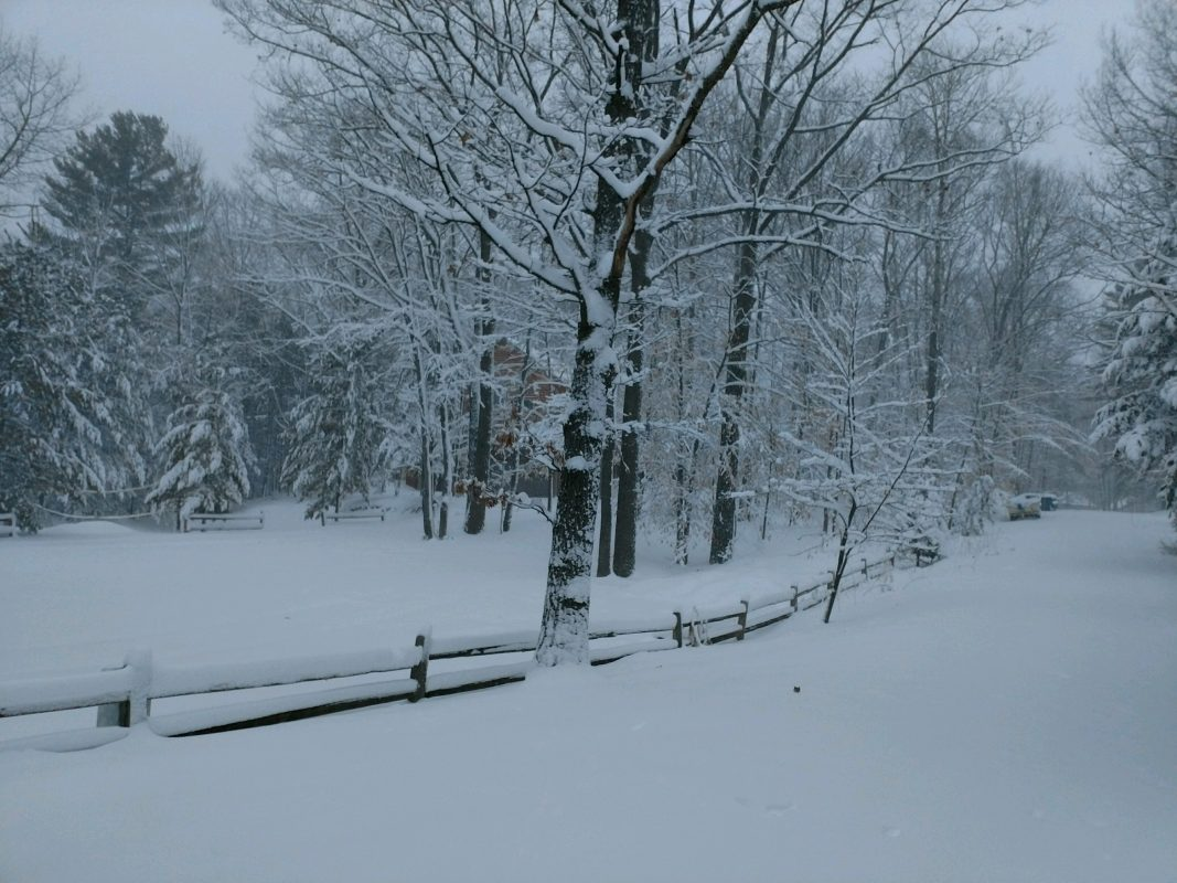 A Re-creation of the Fence, the Snow, the Mind, the Epiphany! I replaced the original fence with this one years later.